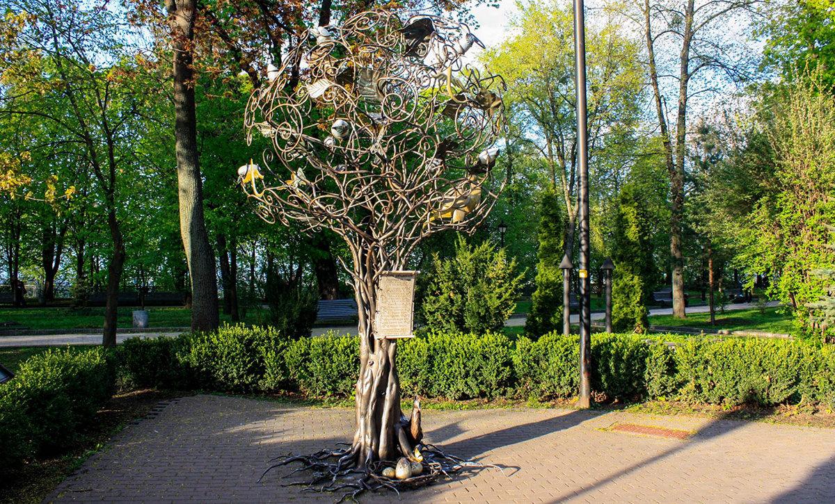 Дерево желаний в Киеве, Фото: mandria.ua