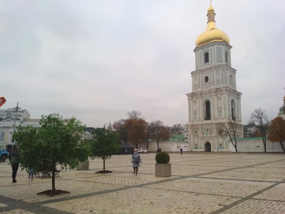 На Софийской площади в Киеве появились скамейки и зеленые деревья., Фото Григория Мельничука