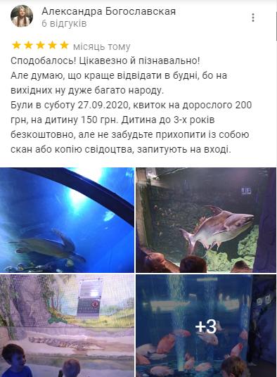 Дельфинарии и океанариумы Киева: цена, отзывы и как добраться, фото-7