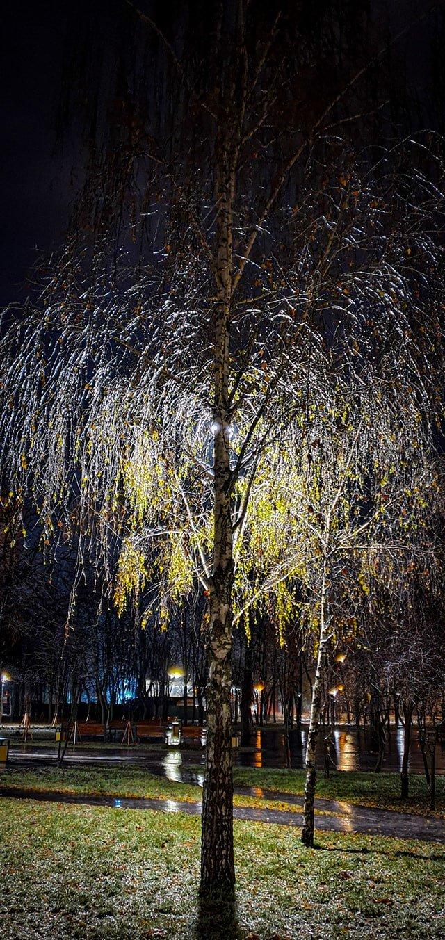 Как выглядят улицы Киева после ледяного дождя 10 декабря, Фото: Vyacheslav Nikolaenko