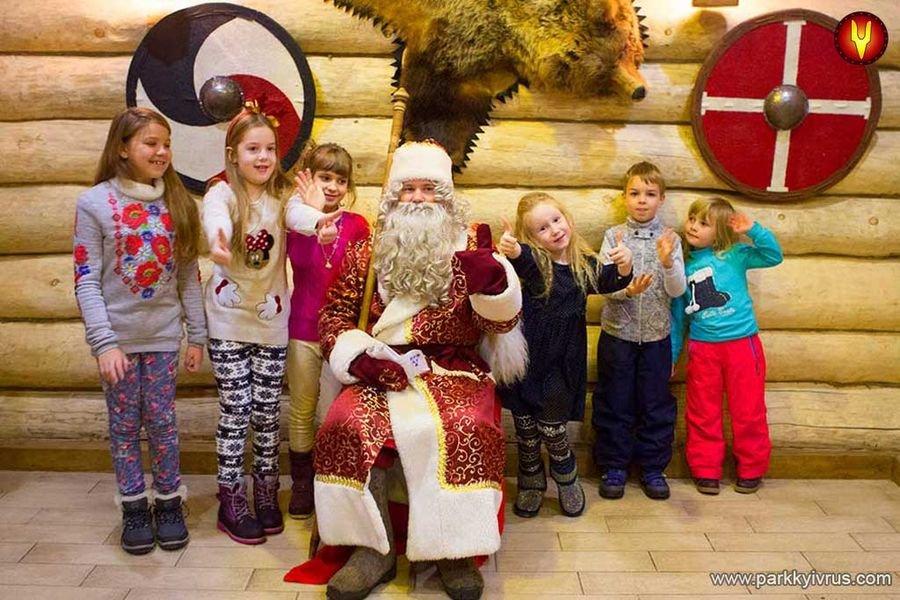 Куда сходить с детьми на новогодние праздники в Киеве?, фото-20