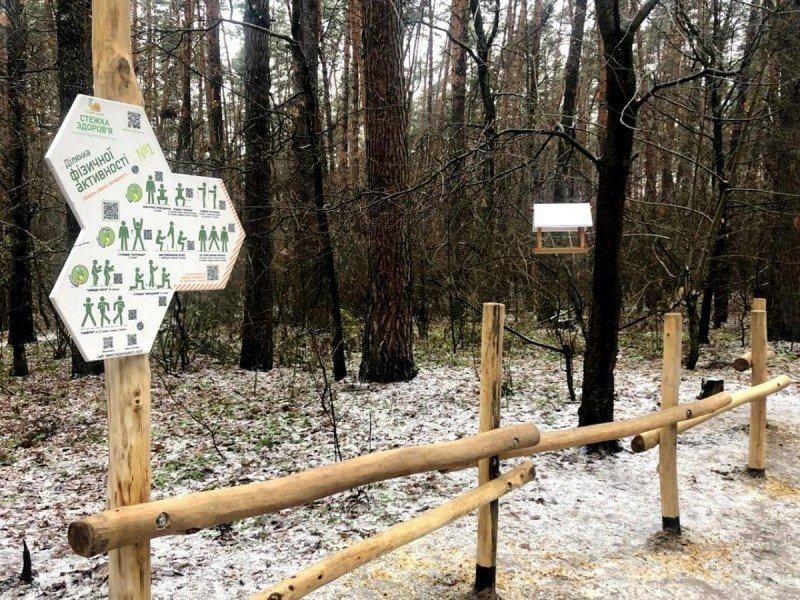 """Как выглядит """"тропа здоровья"""" в лесу на Виноградаре, Фото """"Киевзеленстроя"""""""