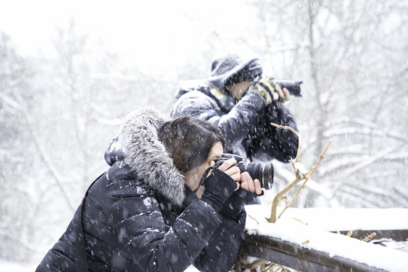 Курсы фотографа с нуля: где в Киеве учат искусству фотографии, Фото: Фотомания