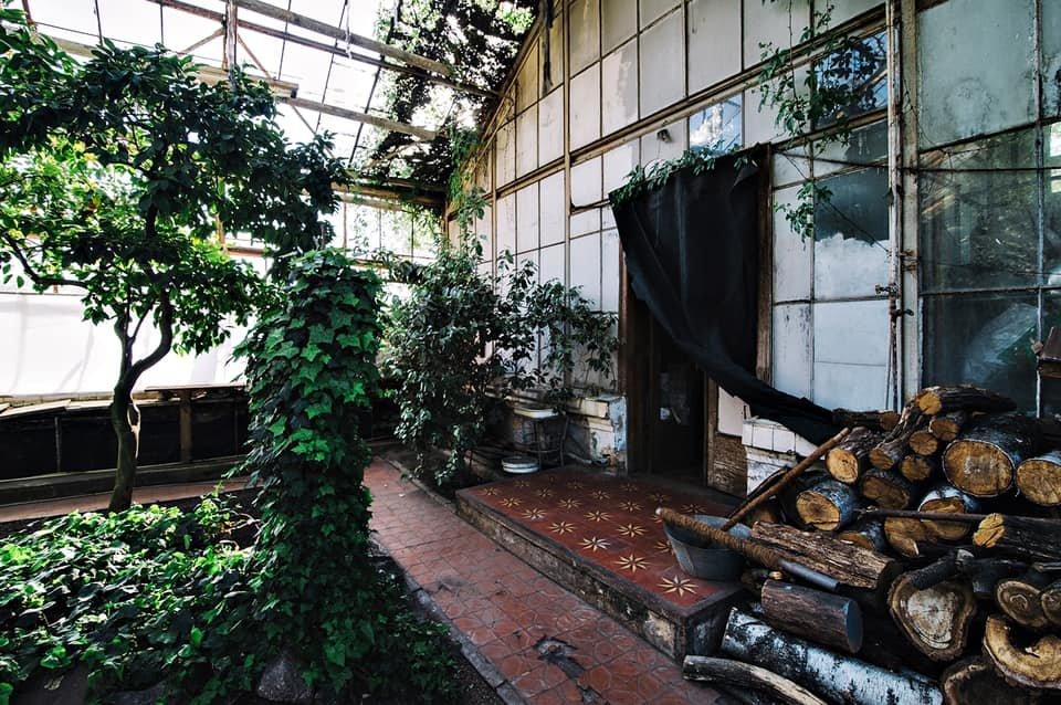На ВДНХ завершили восстановление тепломагистралей для спасения в павильоне растений