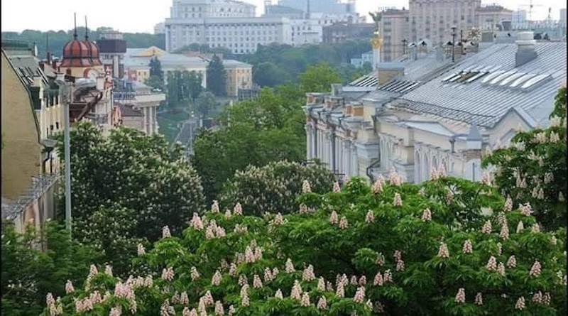 Как и когда в Киеве появились каштаны, Фото: Kyivpastfuture