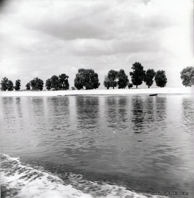 Река Припять в районе г. Чернобыля Киевской обл.