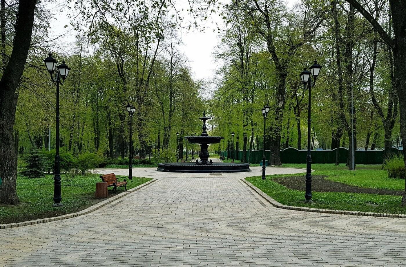 Деревья Городского сада: чем примечателен самый старый парк Киева, - ФОТО, Фото: Анастасия Тимошенко