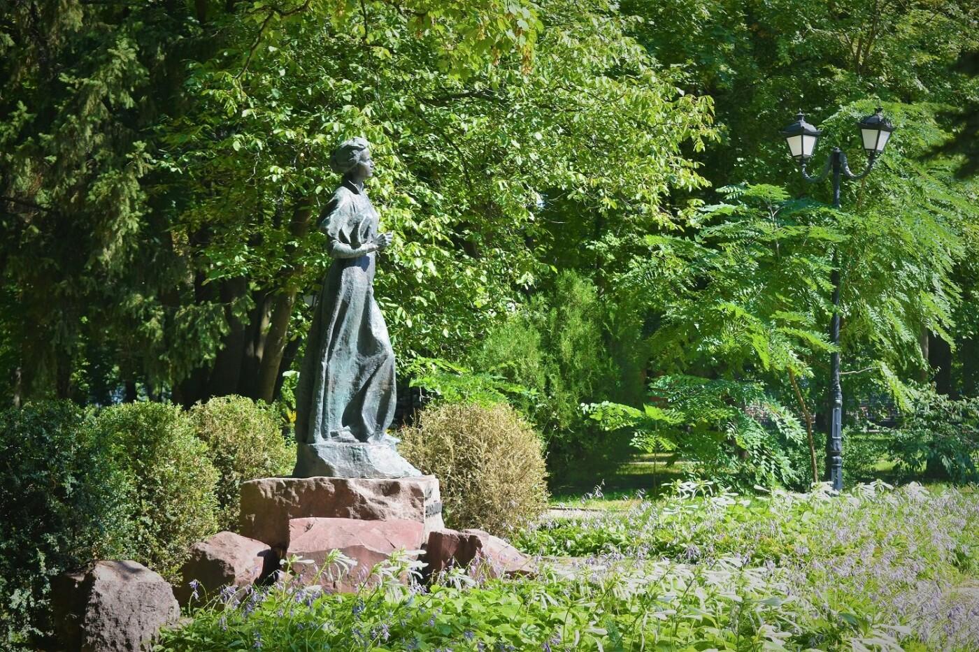 Деревья Городского сада: чем примечателен самый старый парк Киева, - ФОТО, Фото: Anudi Mudara