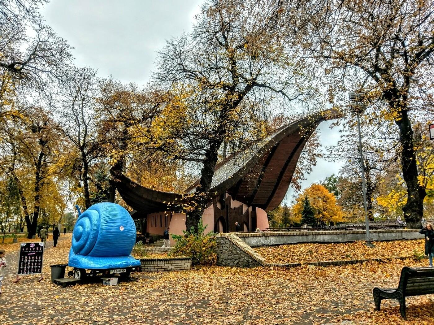Деревья Городского сада: чем примечателен самый старый парк Киева, - ФОТО, Фото: Eugene Mironyuk