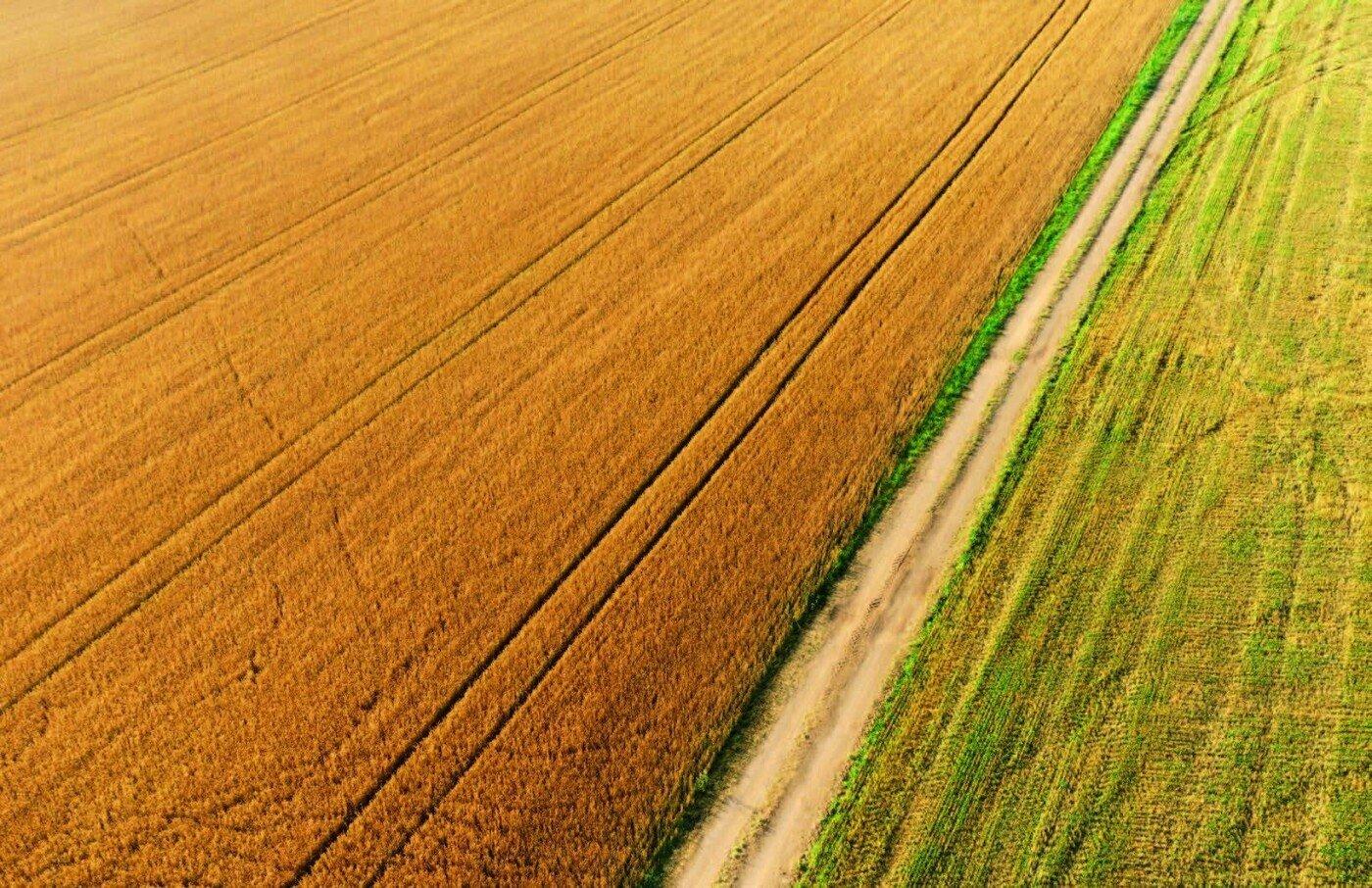 Прозорий земельний ринок проти корупції: як розвиватимуться села Київщини після скасування мораторію, фото-1