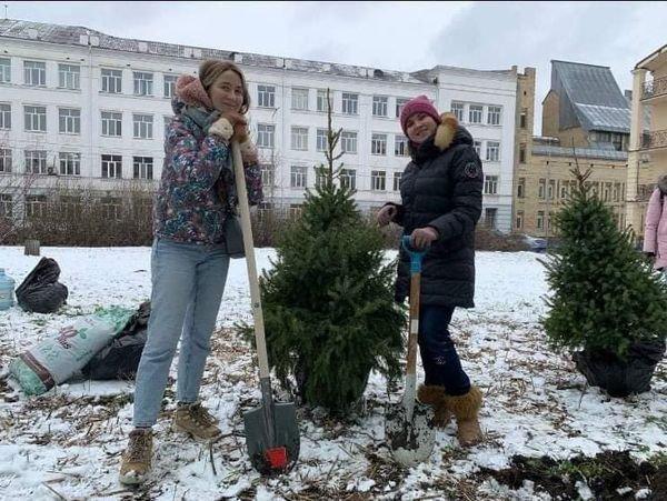 Местные жители высадили деревья