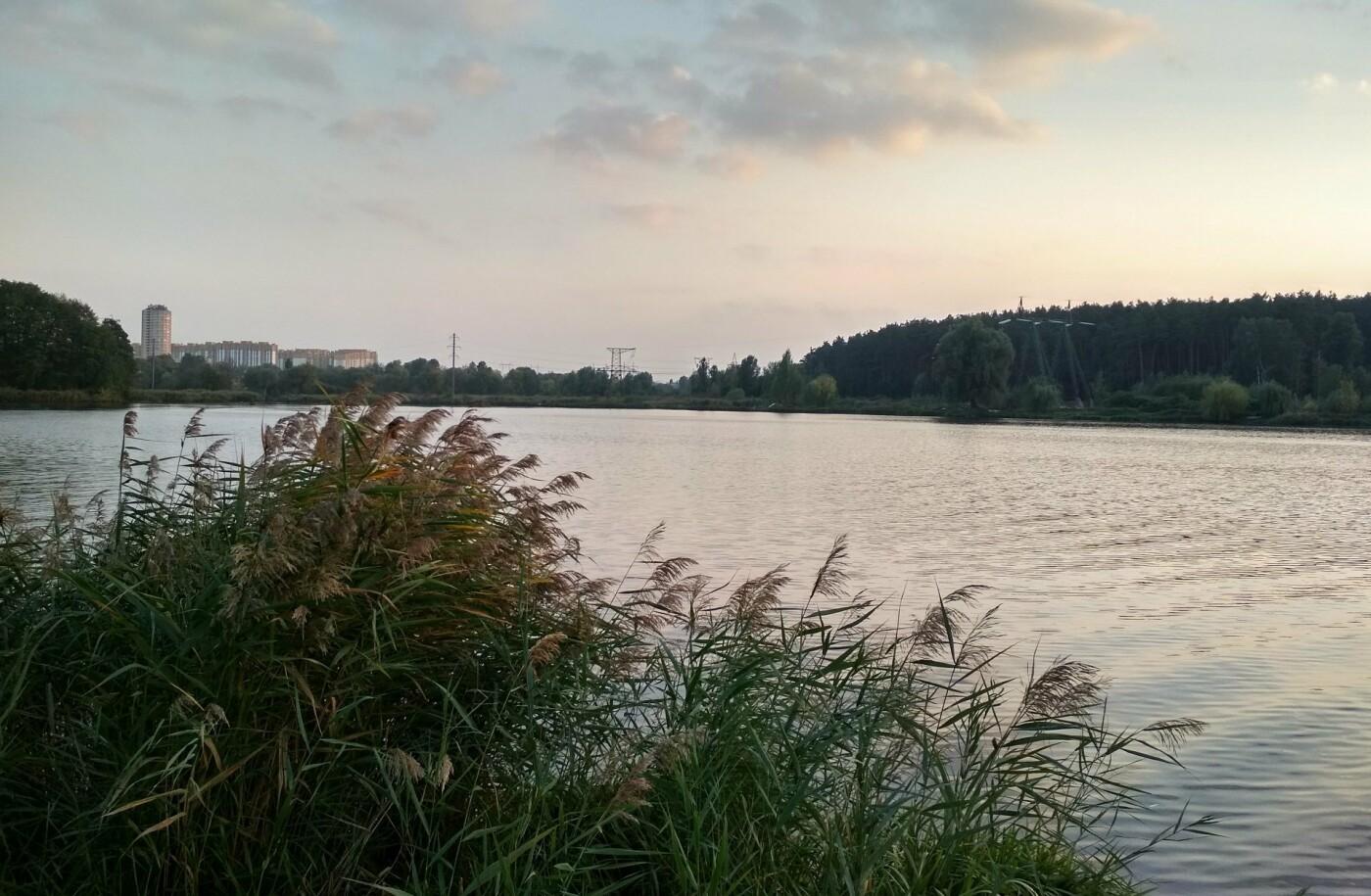 ТОП-5 озер Киева, на которых можно отдохнуть, - ФОТО, Фото: Олексій Нестеренко