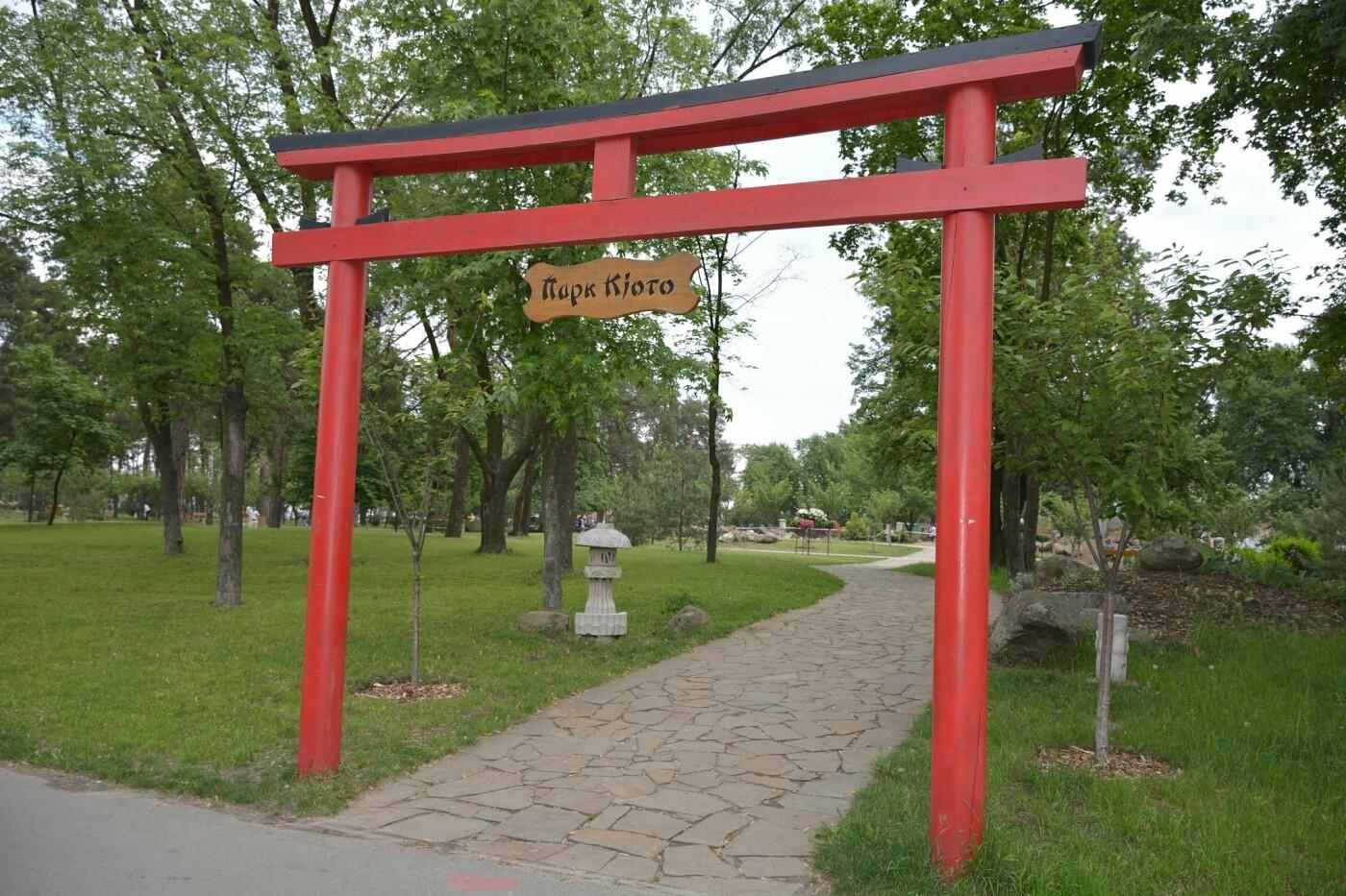 Цветущие сады японских сакур: парк «Киото» в Киеве и его уникальность, - ФОТО, Фото: Андрей Баранов
