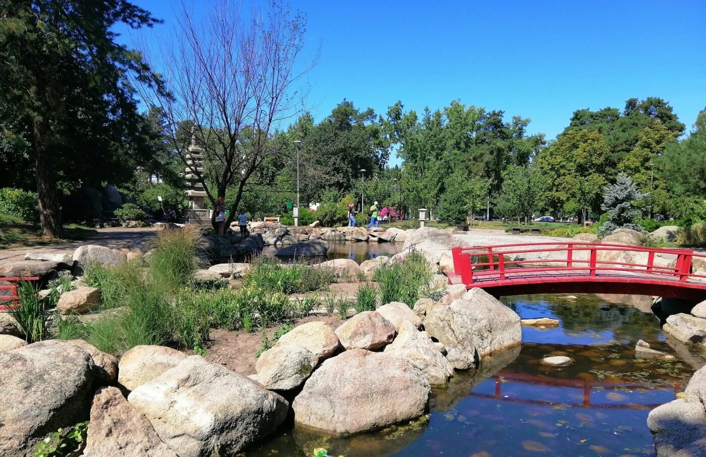 Цветущие сады японских сакур: парк «Киото» в Киеве и его уникальность, - ФОТО, Фото: Ksenia Davinci