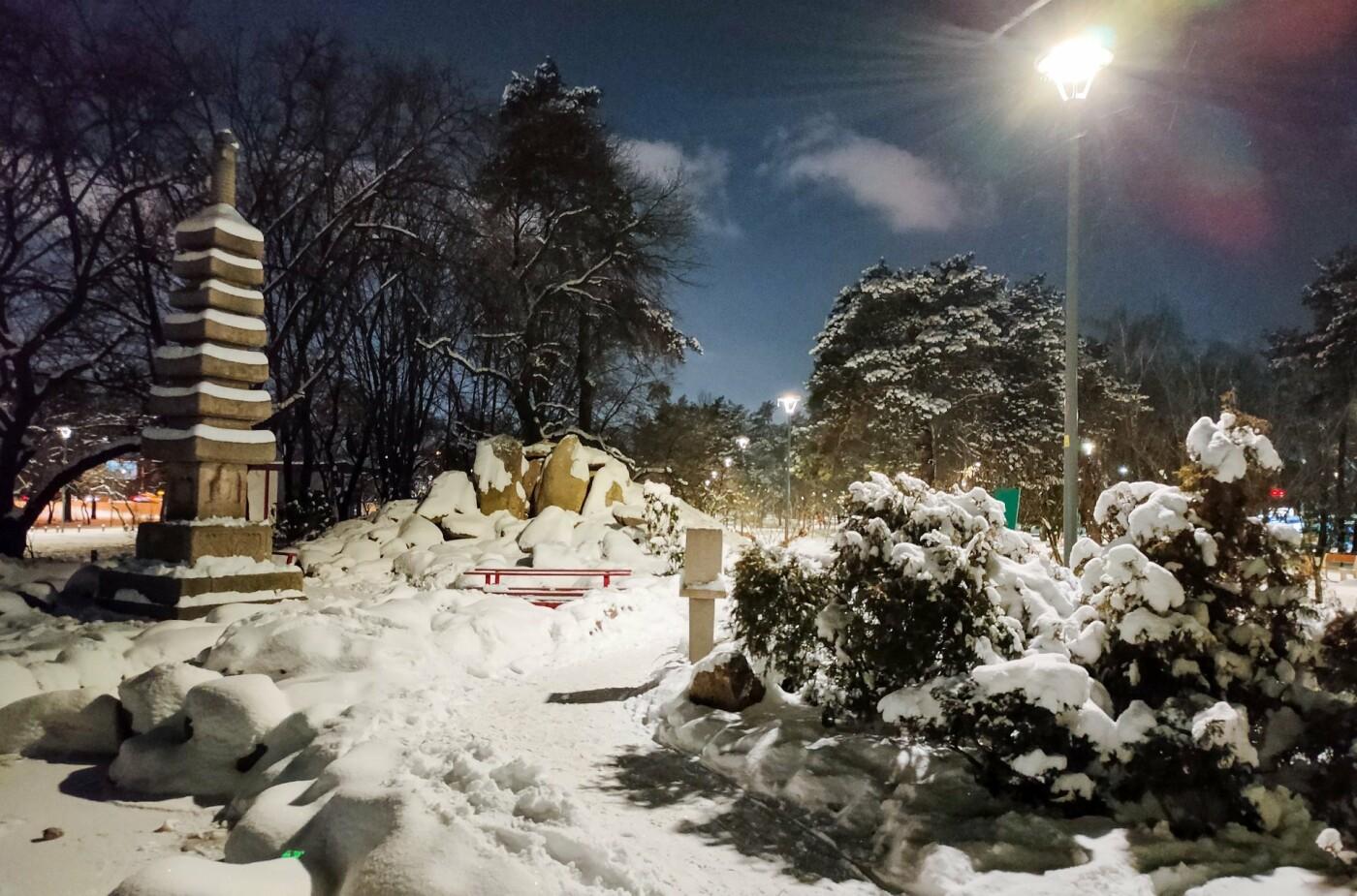 Цветущие сады японских сакур: парк «Киото» в Киеве и его уникальность, - ФОТО, Фото: Yurii PYURA
