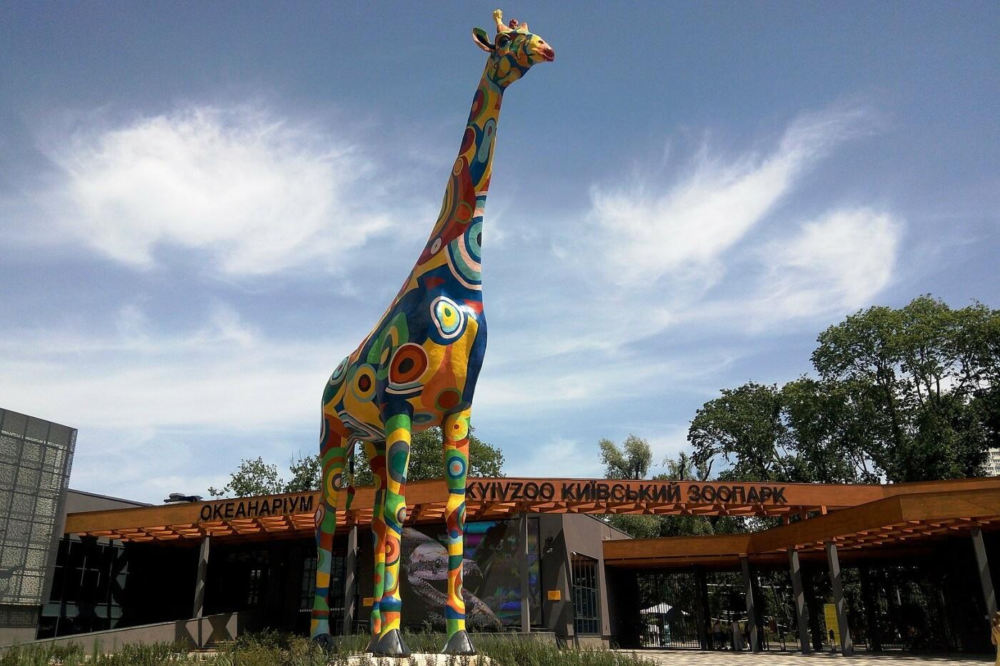 Киевский зоопарк: почему стоит посетить и как до него добраться, Фото: Википедия