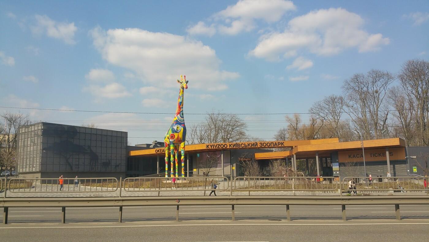 Киевский зоопарк: почему стоит посетить и как до него добраться, Фото: Tanja Anikina