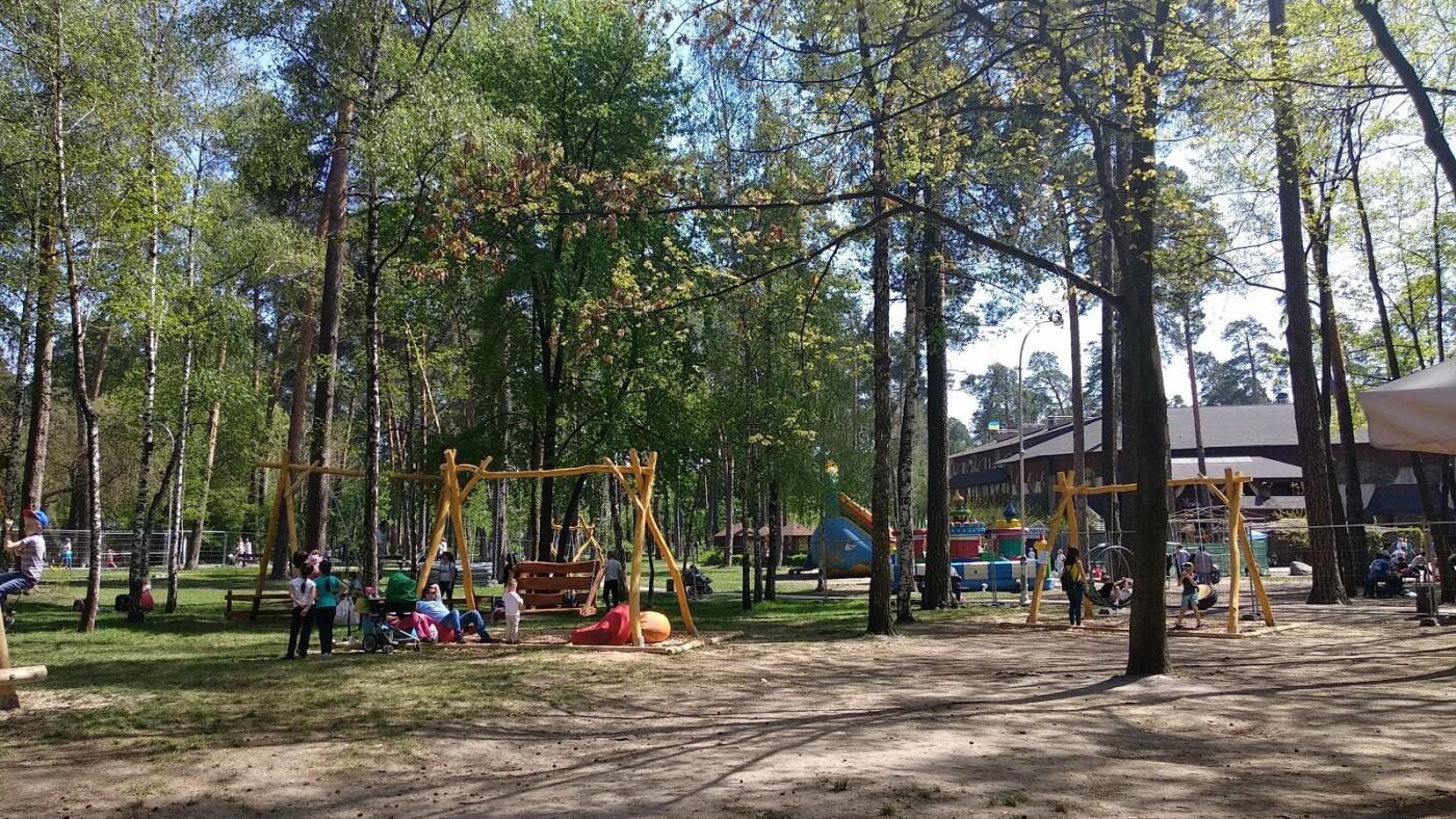Парк партизанской славы в Киеве: где он находится и чем интересен, - ФОТО, Фото: Anna Gan