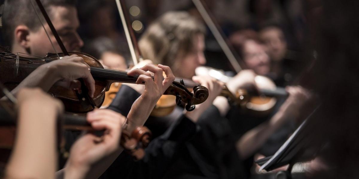 Ко Дню Европы в Киеве пройдёт концерт симфоническго оркестра, Larisa Birta
