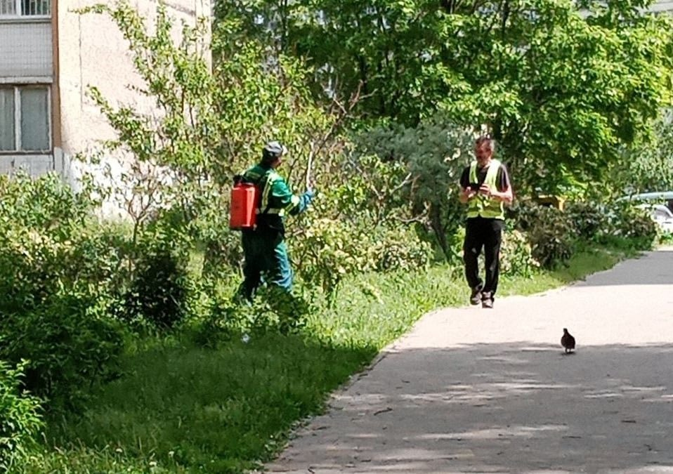 На Троещине в парке распыляют какую-то жидкость, Facebook Yuliia Lavryshyn