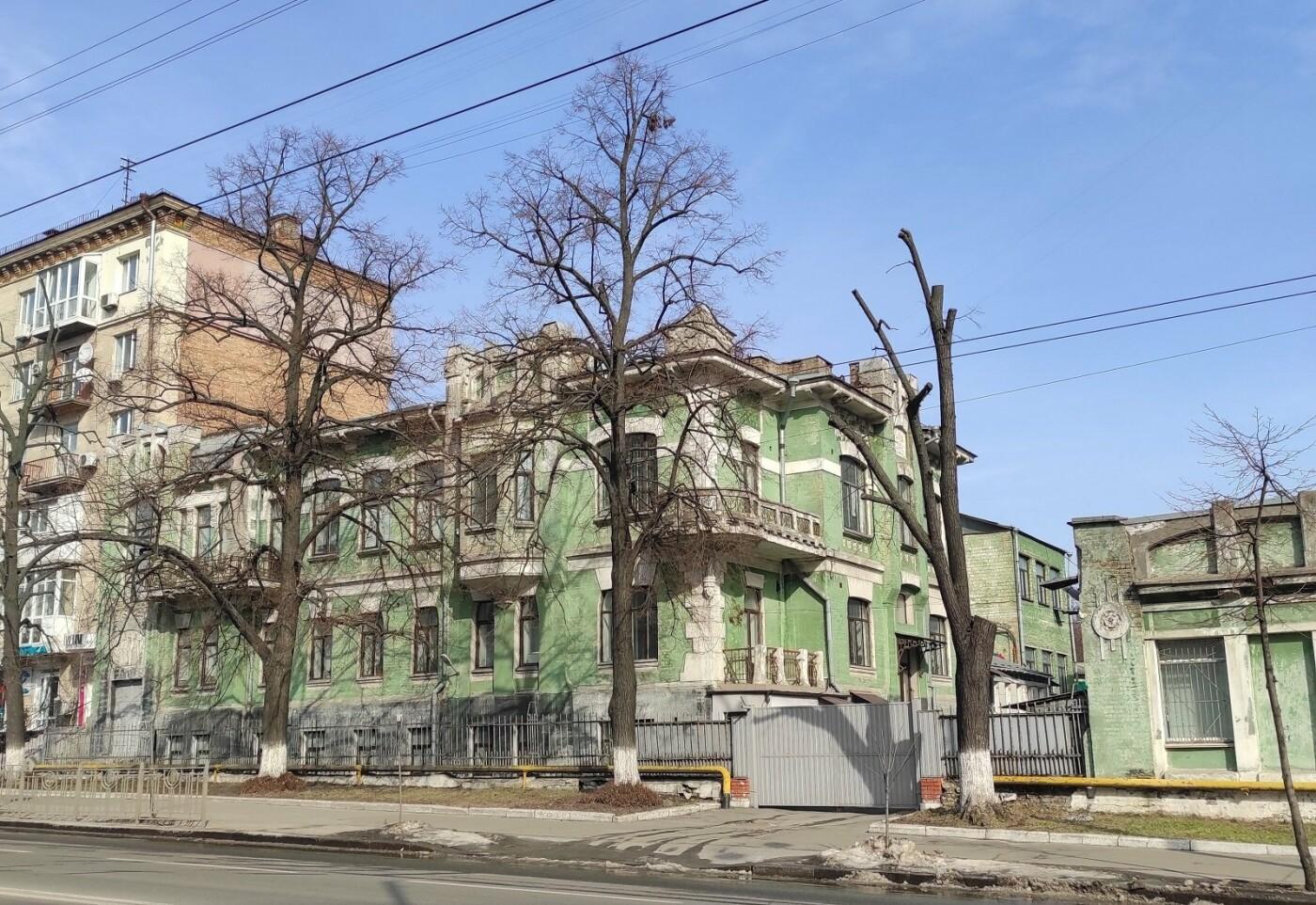Дом с ирисами в Киеве, фото: Снежана N