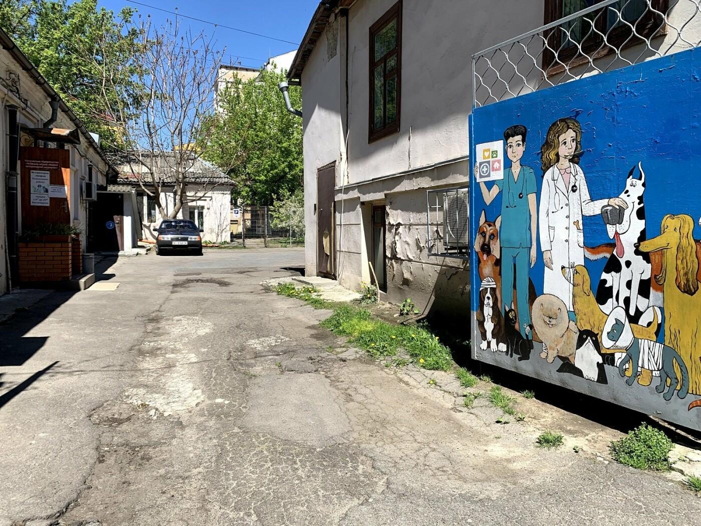 Ветеринарная клиника Киев: куда отвезти питомца, - АДРЕСА, ОТЗЫВЫ, Фото: Lera Kaminska
