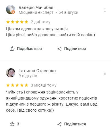 Ветеринарная клиника Киев: куда отвезти питомца, - АДРЕСА, ОТЗЫВЫ, фото-6