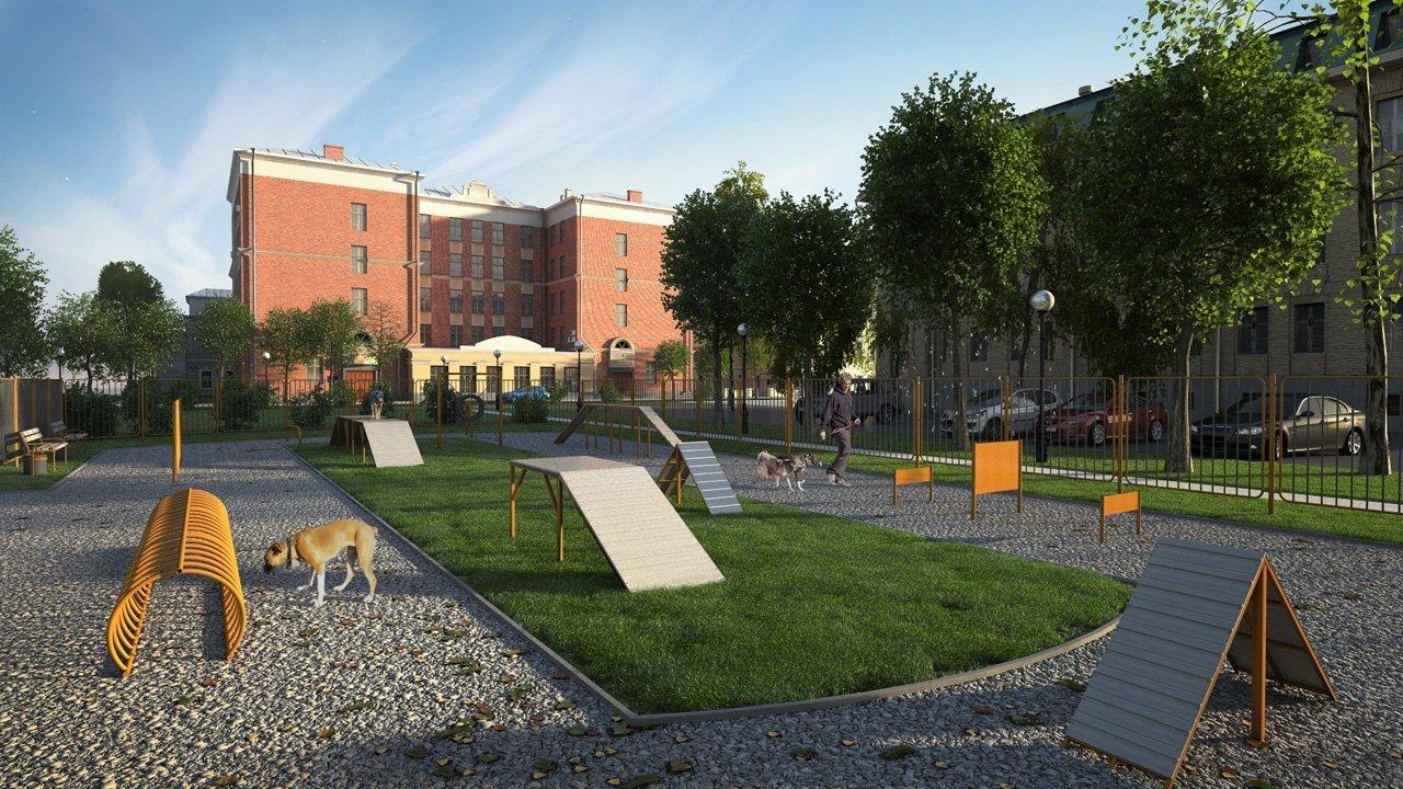 В Киеве есть специальные площадки для выгула и дрессировки собак, Фото из открытых источников