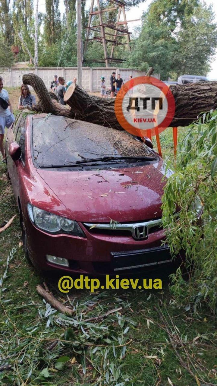 Последствия непогоды в Киевской области, Фото: dtp.kiev.ua