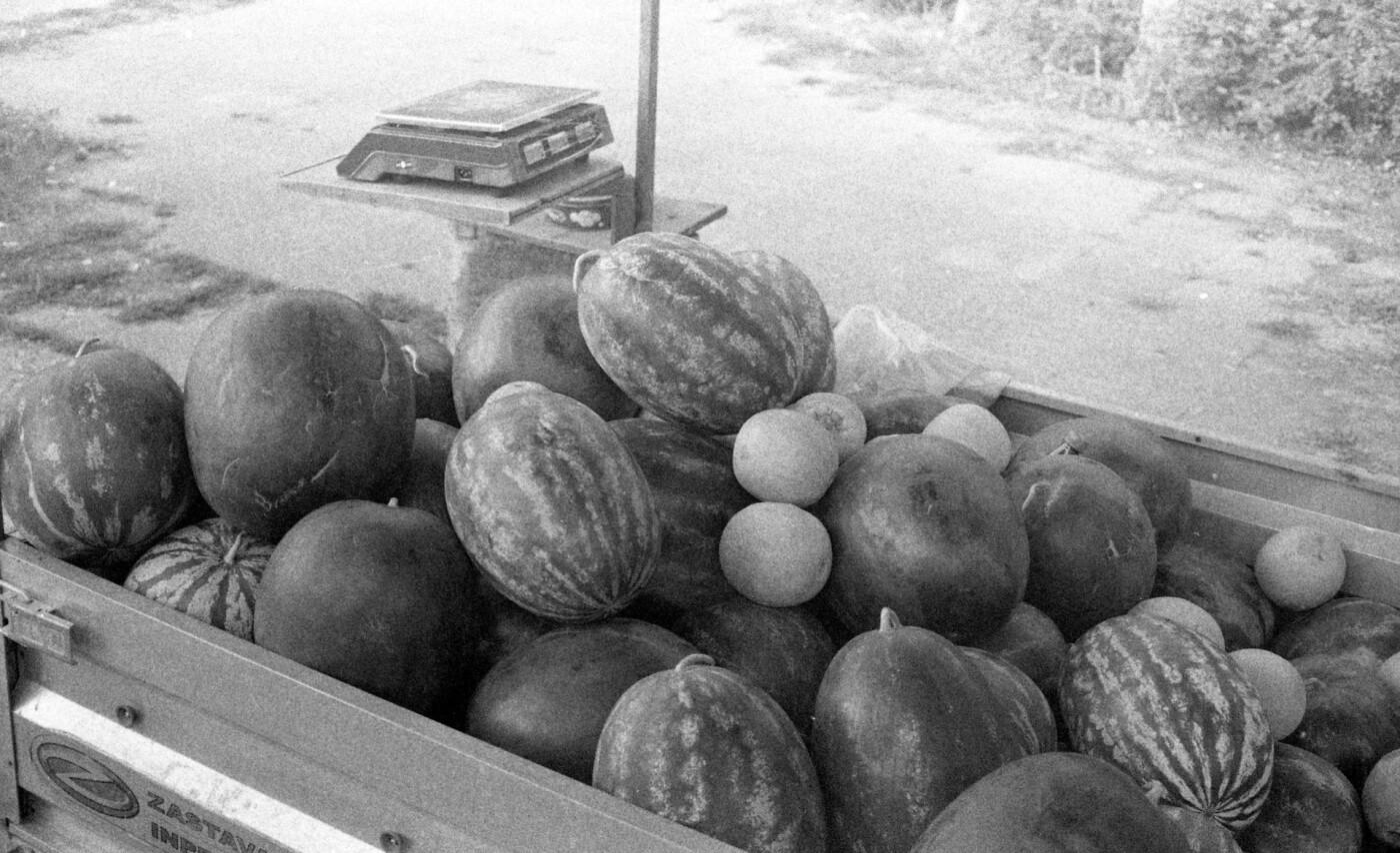 Арбузный сезон в Киеве: как выбирать ягоду и почему они так подорожали, Фото: Nikola Duza