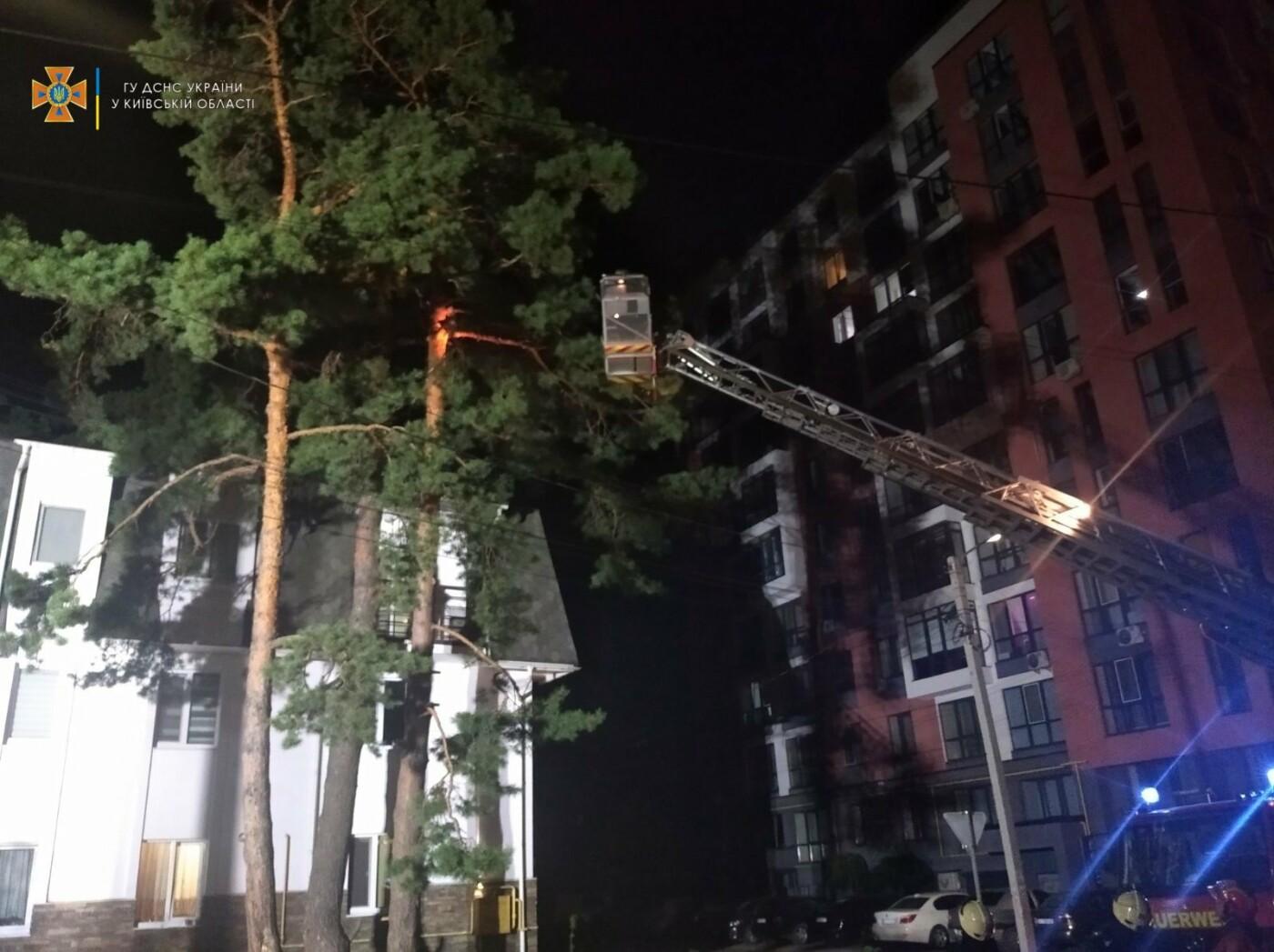 В городе Ирпень спасали застрявшего на дереве человека